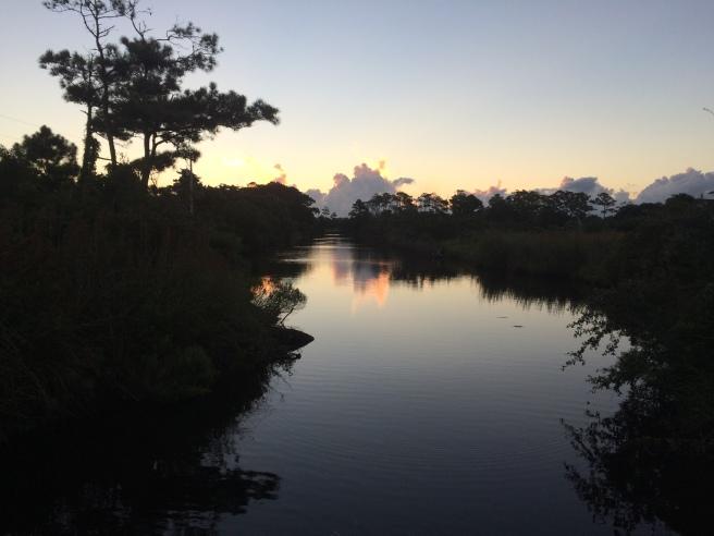marsh-at-dawn